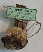 007 SPUD ROCK 546.71