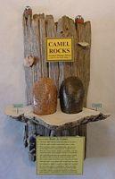 094 CAMEL ROCKS 1257.22